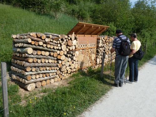 Wildbienenhotel am Türlersee