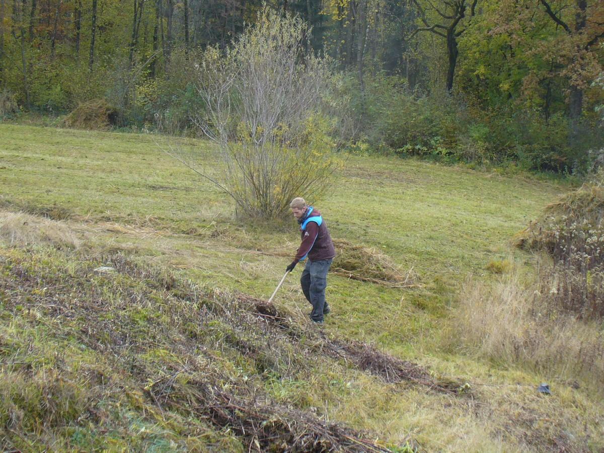 Ausgleichsfl che fahrendenplatz progetti naturnetz for Progetti di piantagione