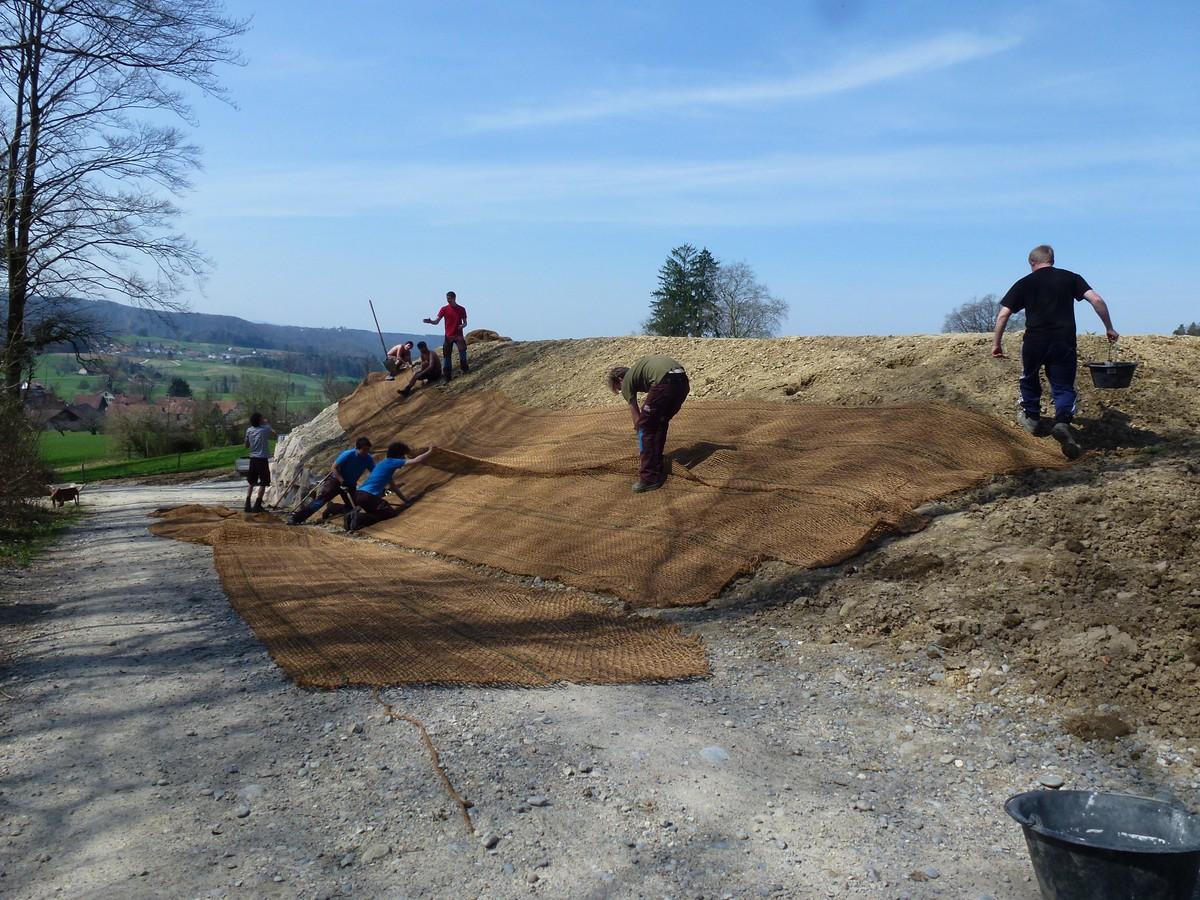 Aufwertung reservoir hulmen progetti naturnetz for Progetti di piantagione