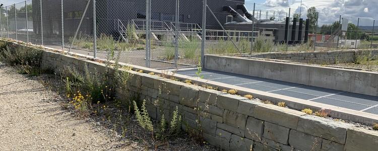 Während die ARA saniert und erweitert wird, erfährt die Umgebung eine ökologische Aufwertung.